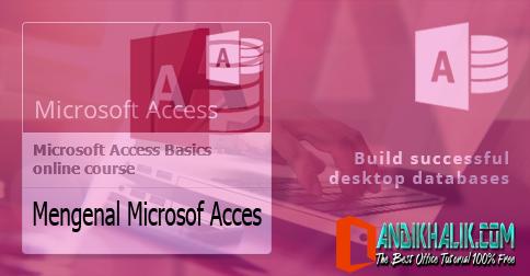 Mengenal Microsoft Access 2007