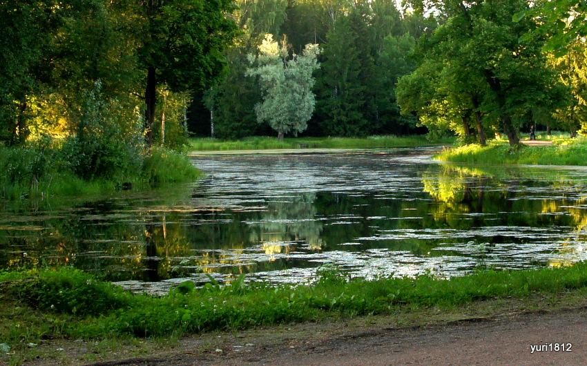 Музей-заповедник Павловский парк