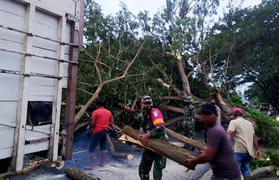 Personil TNI Polri dan Damkar Aceh Besar Sigap Bersihkan Batang Pohon Tumbang Menutupi Badan Jalan