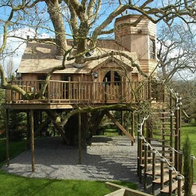 casa del árbol gigante