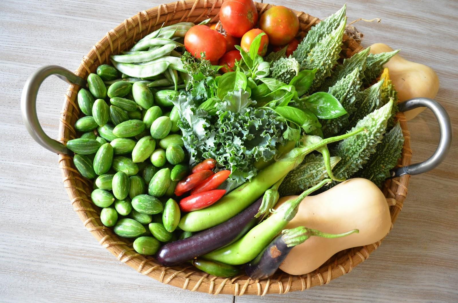 Indian Vegetable Garden