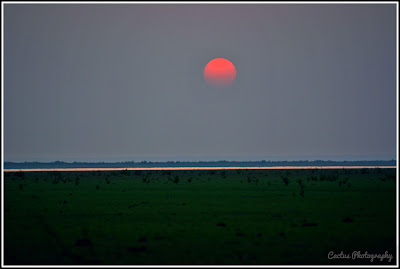 Nijhum Dwip Sea Beach, Sunset in Nijhum Dwip, Nijhum Island Hatia, Trip Navigation Bangladesh, Nijhum Dwip Travel Guide