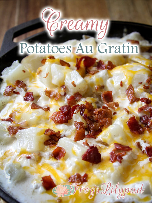 Creamy Potatoes Au Gratin - Not Your Momma's Recipe!