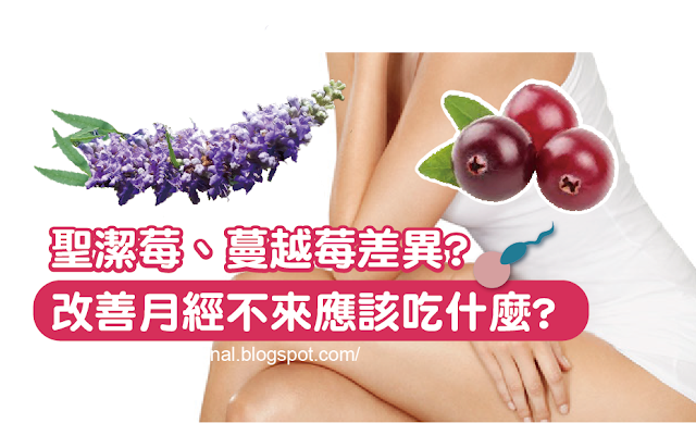 聖潔莓、蔓越莓差異,月經不順,生理期,經痛,助孕