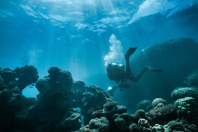 Photo of diver with underwater camera equipment in the Ningaloo Reef