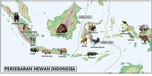 Persebaran Flora dan Fauna di Indonesia Persebaran Flora dan Fauna di Indonesia