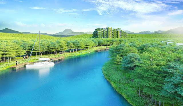 dự án forest sky