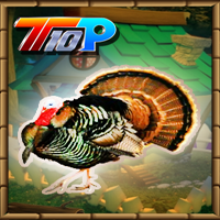 Top10NewGames Thanksgiving Release The Turkey