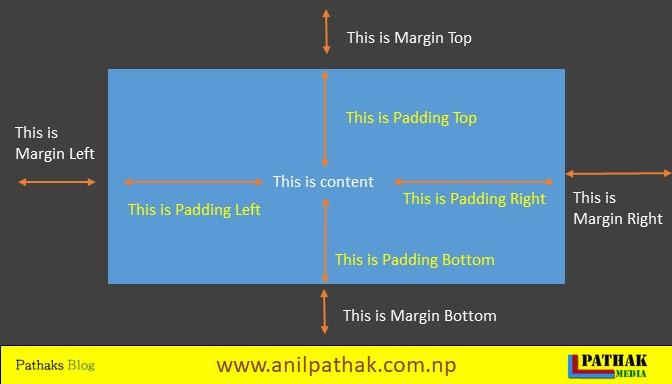 what is css padding and margin, pathaks blog, anil pathak