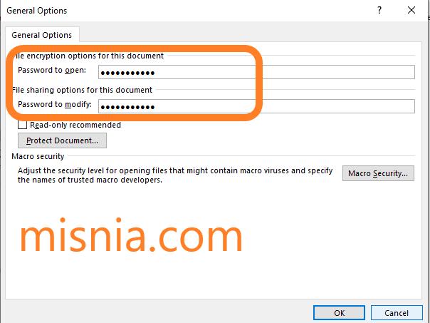 Microsoft Word Password Protect