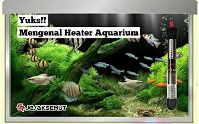 cara menggunakan heater aquarium
