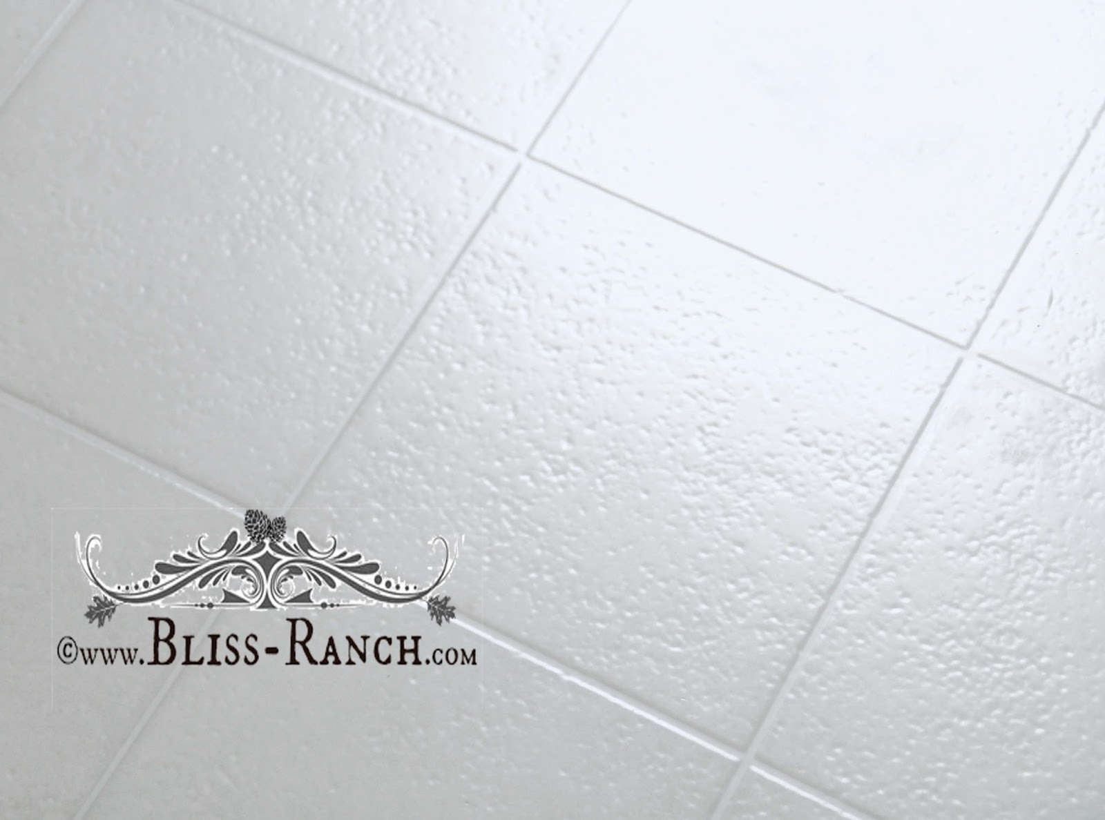 Bliss Ranch: The Family Votes on Laundry Room Flooring