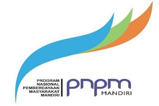 logo PNPM