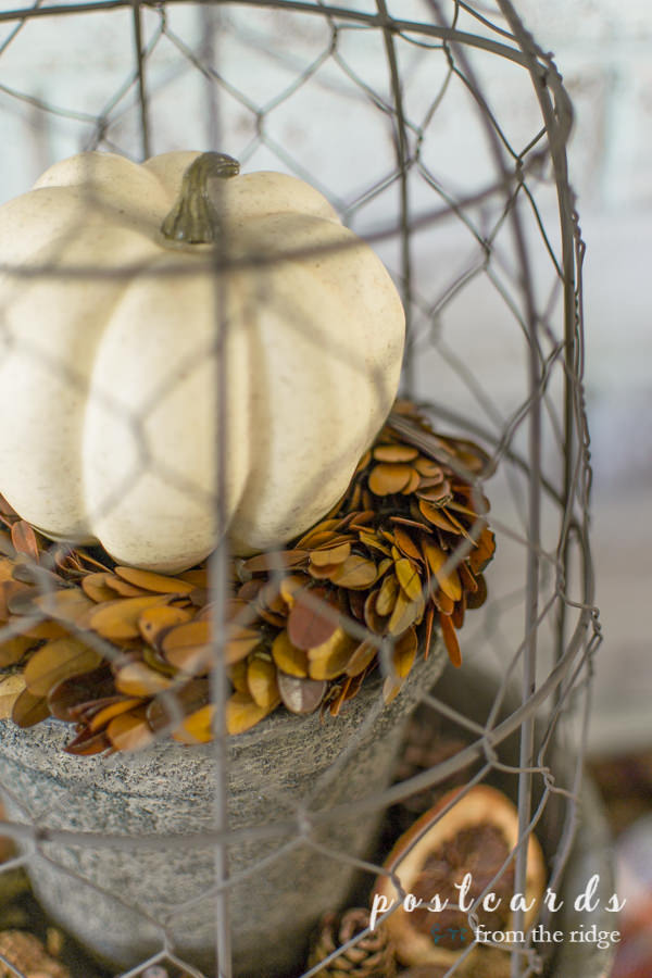 white pumpkin and fall wreath under a chicken wire cloche