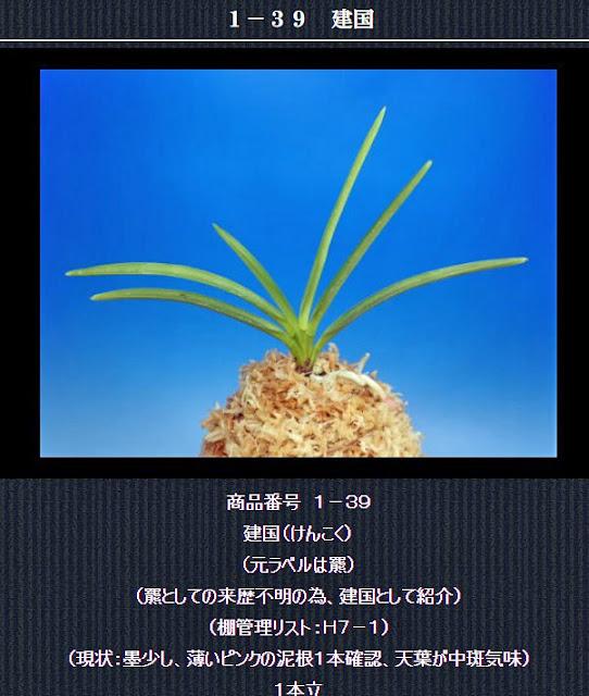 http://www.fuuran.jp/1-39.html