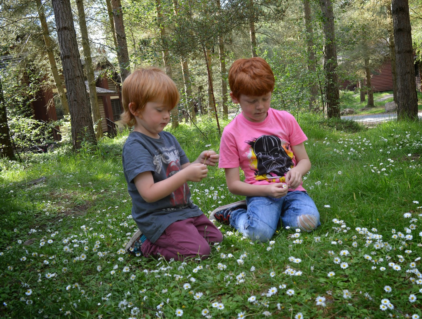 Top Tips for saving money at Whinfell Forest at Center Parcs - lodge garden