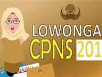 Jumlah Alokasi Formasi CPNS 2019