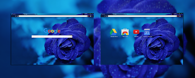 Blue Rose Google Theme  | Chrome Web Store