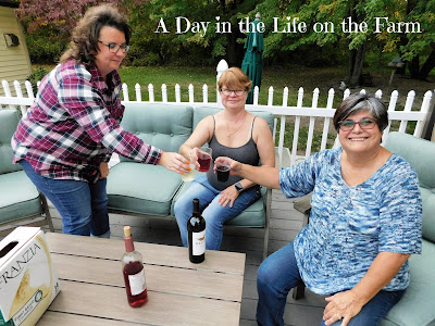 3 women on deck toasting with wine