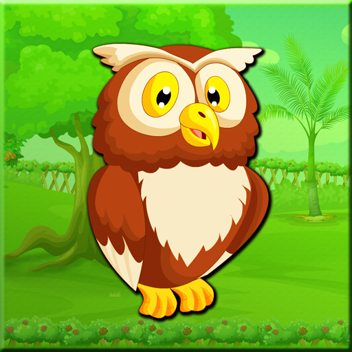 Great Harned Owl Escape W…