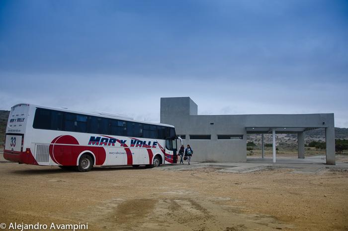 verano 2018 Terminal de omnibus Puerto Piramides