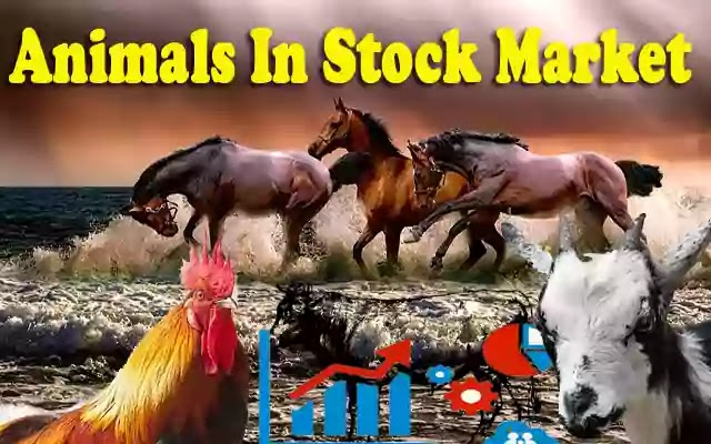 What-animal-represents-the-stock-market