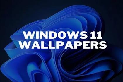 Download Wallpaper Windows 11 Gratis