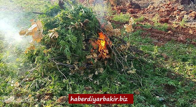 Li Diyarbekirê operasyona tiryakê: 4 binçavî