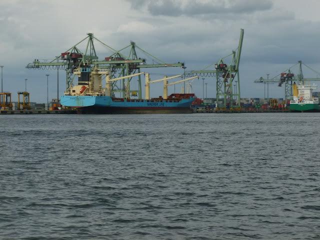 Suuri, Maersk line -niminen rahtialus satamaan kiinnittyneenä. Taustalla suuria merikonttien siirtämiseen tarkoitettuja nostokurkeja.