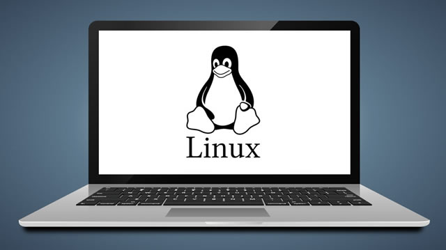 The Best Linux for Laptop