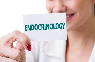 endokrin metabolik diabetes
