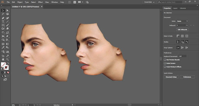 Face Manipulation Effect in Adobe Illustrator