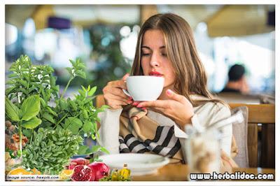 manfaat daun katuk untuk pengobatan