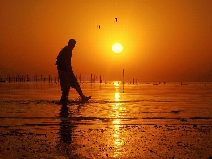 Amazing Sunrise Photography Nice n Funny