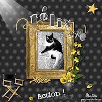 https://blog-photos-chats-du-bocage.blogspot.com/2020/07/felix-au-paradis.html