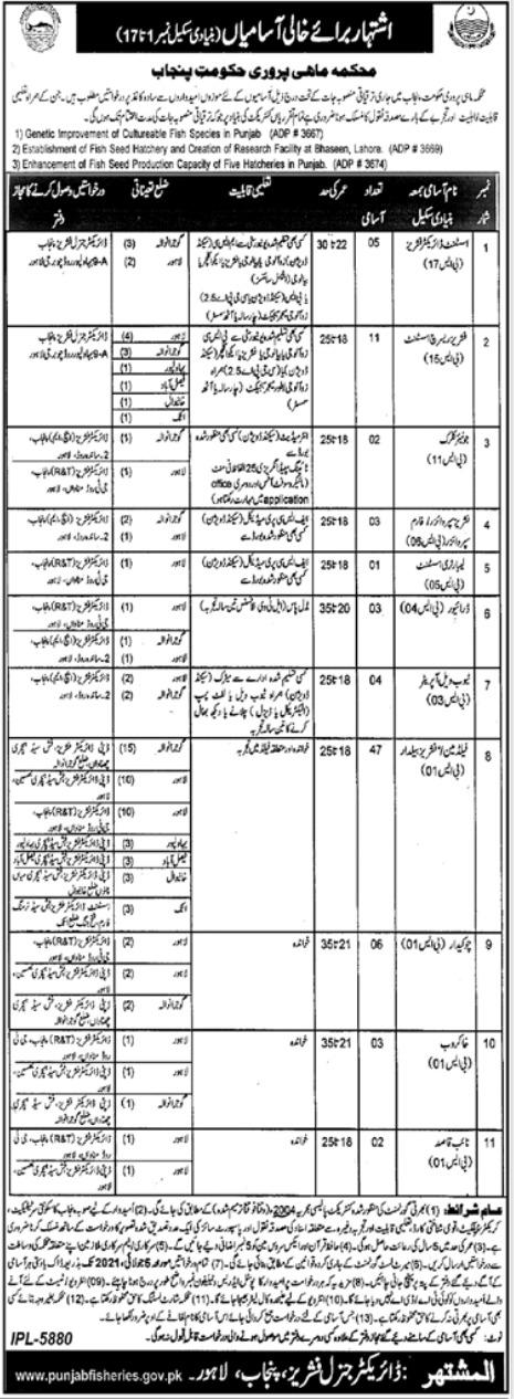 Fisheries Department Punjab Latest Jobs 2021