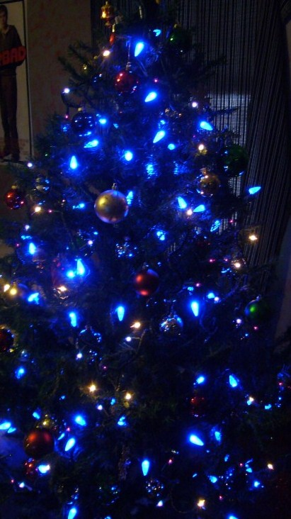 in the middle of the concert i began to think back to my childhood and the very first tree i ever saw that was covered completely with blue lights - Christmas Tree With Blue Lights