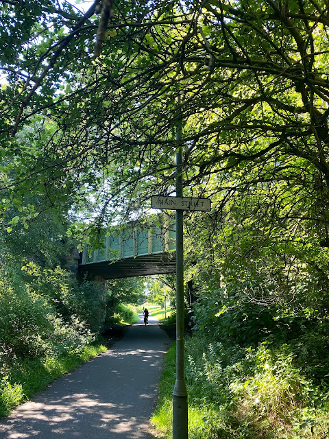 Shaded, forest pathway on one of Edinburgh's Cycle Network paths - Edinburgh, Scotland