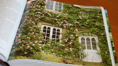 The English Roses. Nuevo libro sobre las 'Rosas Inglesas' de David Austin