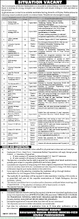 RESCUE 1122 Jobs 2020 - Latest Jobs in Rescue 1122 June 2020 - Download Application form RESCUE 1122 Jobs