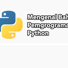 Mengenal Apa Itu Python dan Penggunaannya