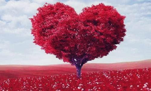 Foto, Berita dan Info Apakah 15 Februari Setelah Hari Valentine Itu, Hari Jomblo Nasional - www.heru.my.id
