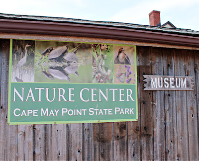 Nature Center Museum at Cape May Point State Park in New Jersey