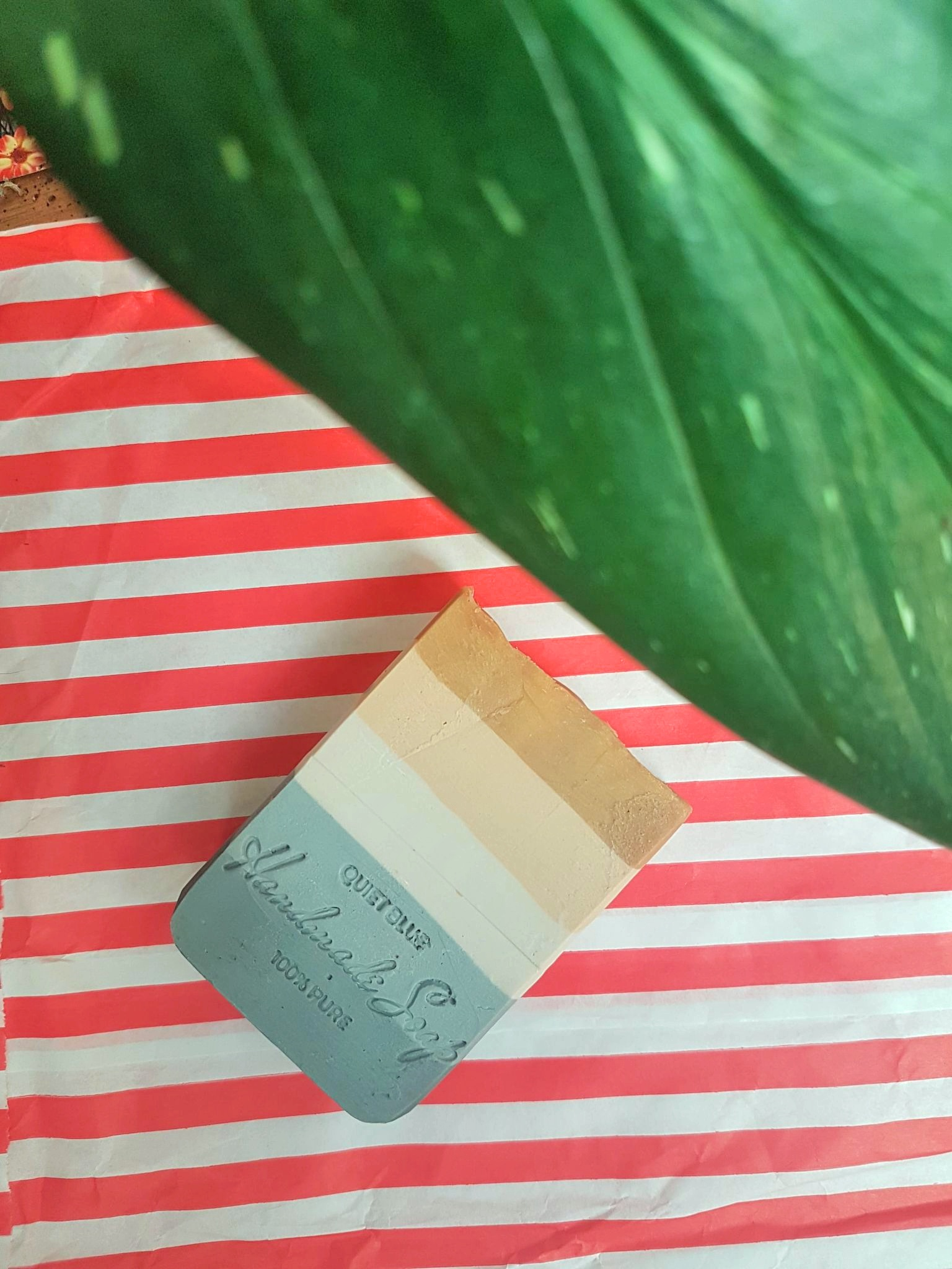 Quiet Blue Handmade Soap in scent Surf & Suntan.  The soap is sitting on a red and white striped background next to a big tropical green leaf. This soap has five layers of colour: dark grey, light grey, cream, cappuccino, and tan.