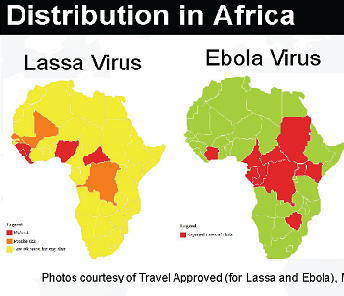 Lassa fever and Ebola fever causes in Africa