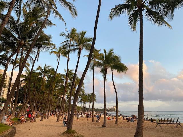 Waikiki Beach during quarantine