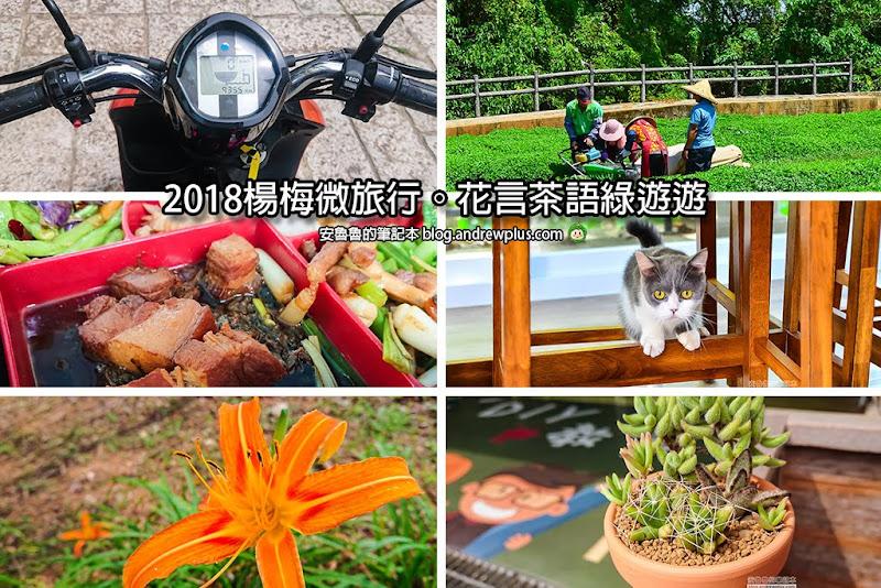 funtaoyuan.jpg