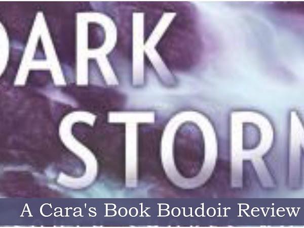 Dark Storm by Karen Harper Review