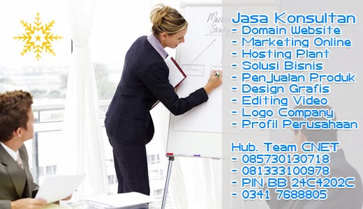 Konsultan Marketing Online via Website