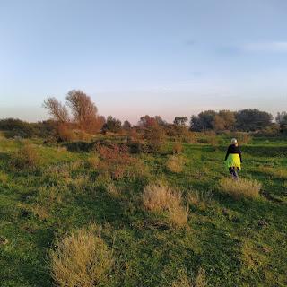 geocaching multi landtong rozenburg natuurgebied